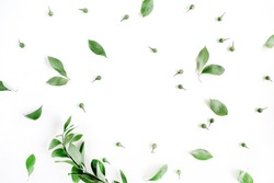 Frame wreath of green leaves on white background, Flat lay, top view. Flower background