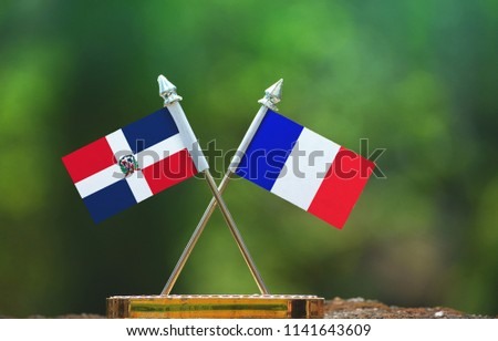 France and Dominican Republic small flag with blur green background #1141643609