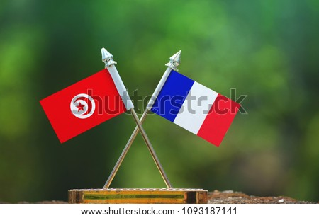 France and Tunisia small flag with blur green background #1093187141