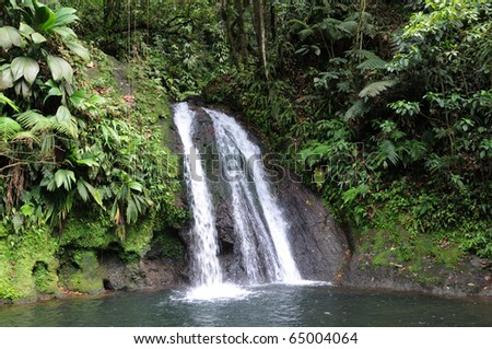 France, Crayfish Cascade in Guadeloupe