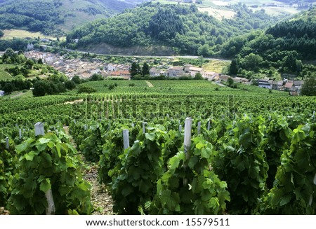 france rhone valley rhone beaujolais vineyards beaujeu