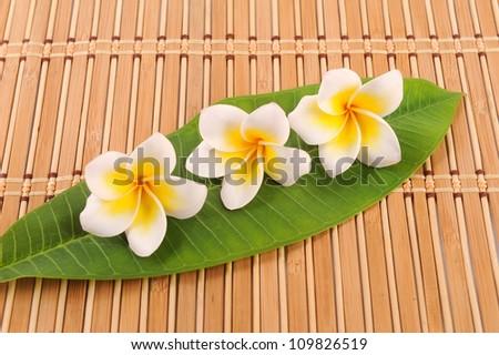 Frangipani and polished stone on bamboo mat
