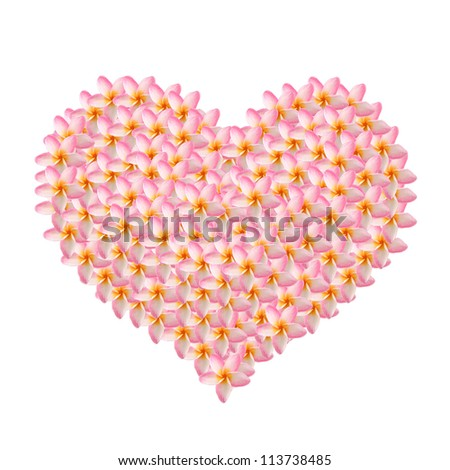 frangipani created in heart shape isolated on white
