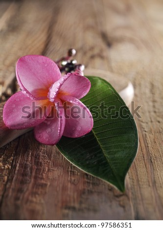 frangipani flower with green leaf