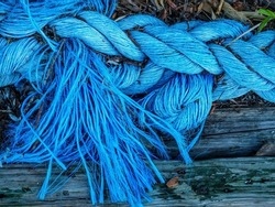 Frayed end of light blue nautical rope repurposed as a minor landscaping element, for motifs of wear and tear