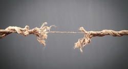 Frayed rope about to break on grey background. Risk