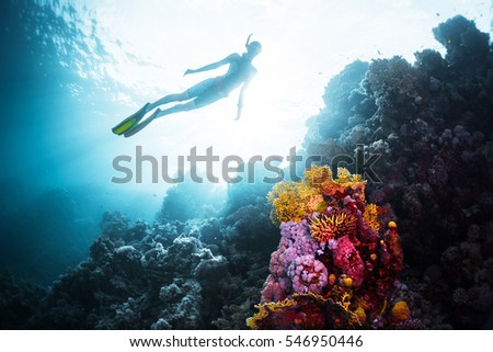 Free diver gliding underwater over vivid coral reef in a tropical sea