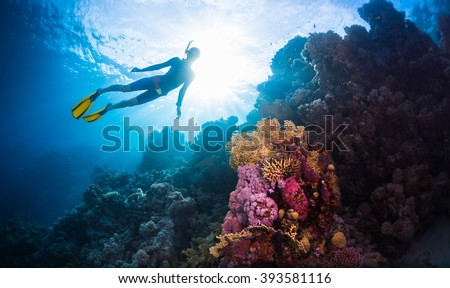 Stock Photo Free diver swimming underwater over vivid coral reef. Red Sea, Egypt