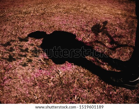 Free man watching his shadow turn into butterflies - self knowledge - personal growth - emotional healing
