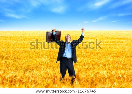 Free successful  businessman in the field under blue sky