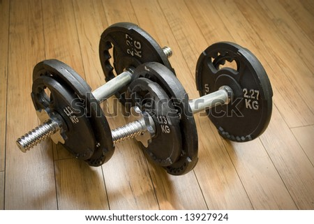 Free weights sitting on a wood floor - the perfect accessory to any home gym.