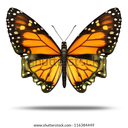 Free your mind and freedom to explore the opportunities of life and personal achievement as a Monarch butterfly in the shape of a human head as power of intelligence and brain health care icon.