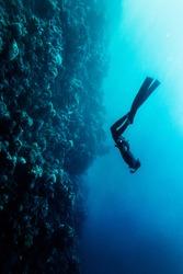 Freediver in wetsuit neoprene swim in the sea