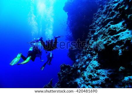 freediving scuba photo #420481690