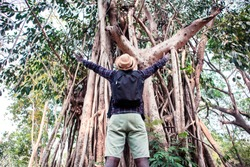 Freedom adventurers african man standing with big trees in the forest