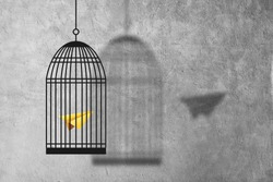 Freedom Concept : Abstract image of Yellow paper plane flying escape out of birdcage.