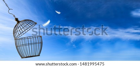 Freedom concept. Escaping from the cage Foto stock ©
