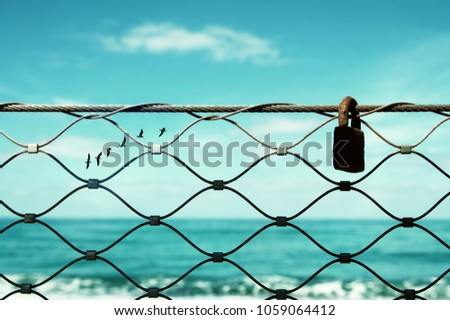 freedom concept. image fence and old rusty lock and birds flying in the horizon. everything is possible