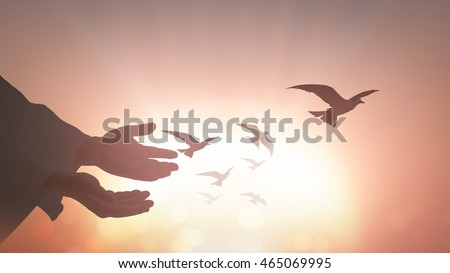 Freedom concept: Silhouette human open two empty hands with palms up and birds flying over sunset background. #465069995