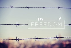 Freedom motivational inspiring quote and landscape with barbed wire fence background. Vintage soft light hipster style.