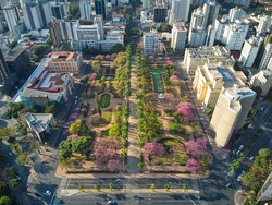 Freedom square (praça da liberdade) in the Brazilian city Belo Horizonte. Detain in the traditional buildings and the pink tress, called Ipês, in the square.