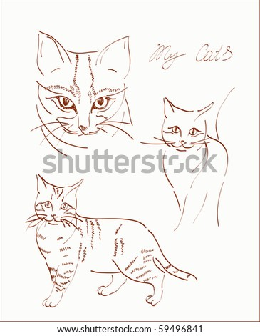 freehand sketchs of domestic cats