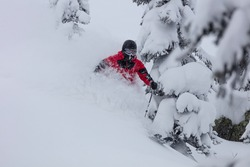 Freerider is buried in fresh snow, turning and jumping between the trees. freeride skiing in deep powder snow. Chest deep snow during snow storm. Good powder day. Funny skiing, rides over off-piste