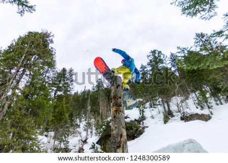 Freestyle snowboarder makes flatland standing on a log in a forest in winter mountains #1248300589