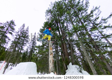 Freestyle snowboarder makes flatland standing on a log in a forest in winter mountains #1248300598