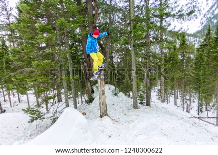 Freestyle snowboarder makes flatland standing on a log in a forest in winter mountains #1248300622
