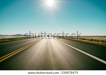 Freeway / road in the desert - at the horizon a car speeds up #334878479