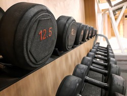 freeweight zone on the gym