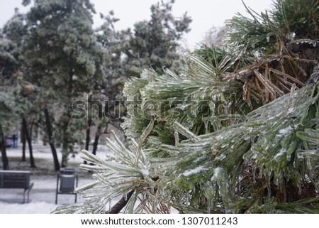 Freezing rain, ice rain, freezing nature #1307011243