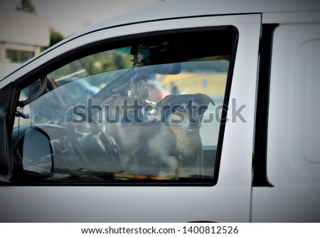 Freiberg Germany - May 10, 2019: two dogs waiting for their owners in a van #1400812526