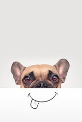 French Bulldog dog with half of face covered with white paper with painted on funny happy mouth with tongue sticking out with empty copy space above
