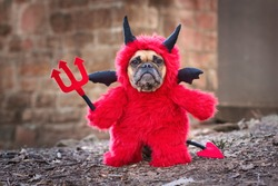 French Bulldog dog with red Halloween devil costume wearing a fluffy full body suit with fake arms holding pitchfork, with devil tail, horns and black bat wings standing in front of blurry wall