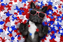 french bulldog waving a flag of usa and victory or peace fingers on independence day 4th of july with sunglasses
