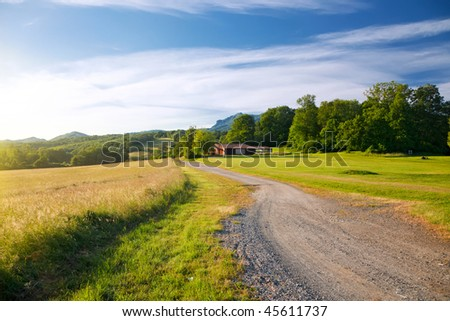 French countryside: landscape in Pyrenees #45611737