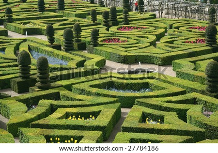 French formal garden from Chateau de Villandry, France, Loire Valley