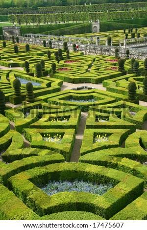 French formal garden in Chateau de Villandry, France, Loire Valley