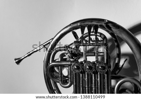 French horn musical instrument, wallpaper #1388110499