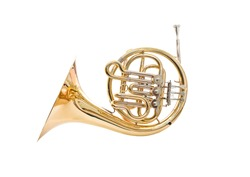 French horn on a white background