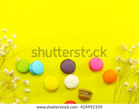 french macaroons with dried flower and copy space background #424992109