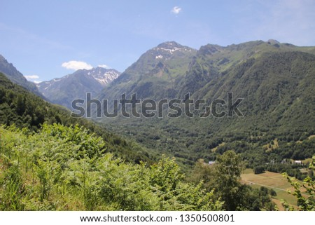 French mountains in summer