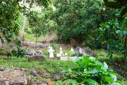 French Polynesia, Marquesas, Nuku Hiva Island. Typical small cemetery.