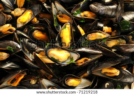 French recipe, mussels mariniere