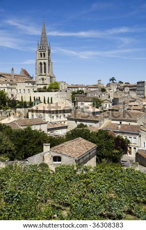 French vineyard with the village of Saint Emilion in the background