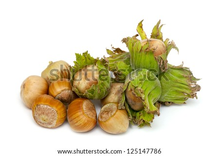 fres hazelnuts isolated on white  background