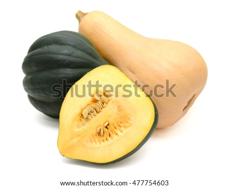 Fresh Acorn Squash and Butternut Squash Isolated On White Background #477754603