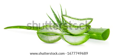 Fresh aloe vera leaves and slices is isolated with white background for Health and beauty products.